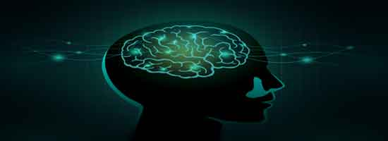 كيماويات الدماغ وعلاقتها بالأفراد والمجموعات